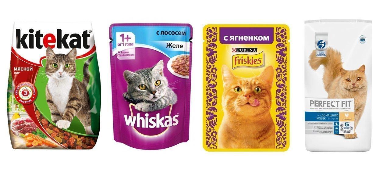 сухой корм для кошек эконом класса