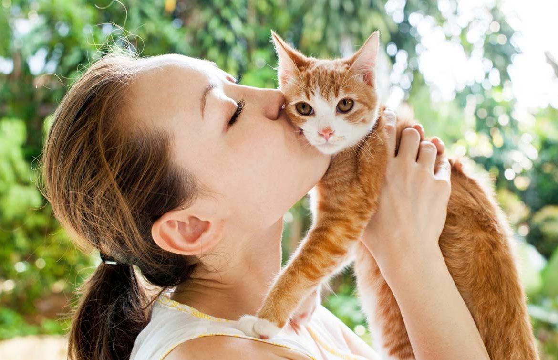 капли картинки как кошки с человеком пойдет малоизвестном для