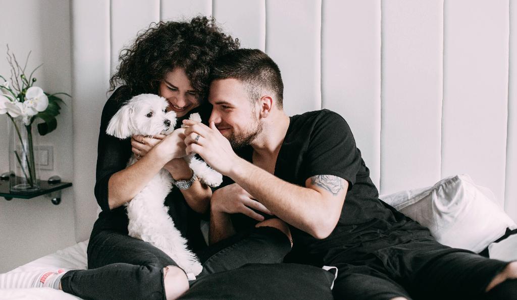 Игра с щенком