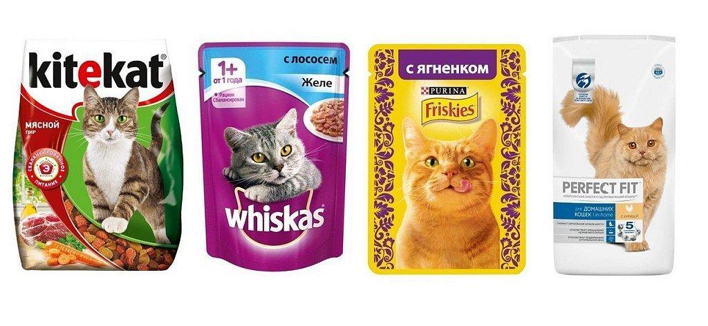 Корма для кошек эконом класса — это набор субпродуктов II категории (отходов производства), что позволяет снизить цену